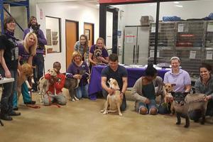 Coastal Pet Rescue Event Volunteers